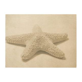 Starfish Wood Wall Art