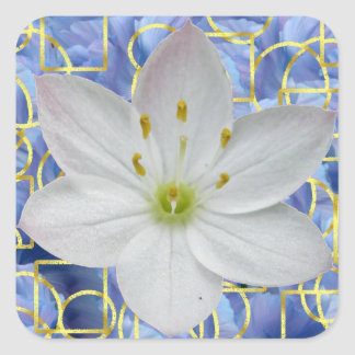 Starflower on Blue Abstract Stickers