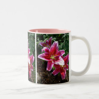 Stargazer Lilies Two-Tone Mug