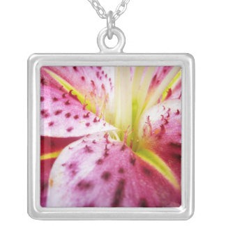 Stargazer Lily Bright Magenta Floral Silver Plated Necklace