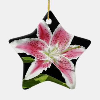 Stargazer Lily Ceramic Star Decoration