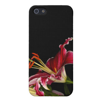 Stargazer Lily Cover For iPhone 5/5S