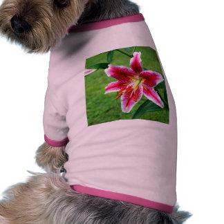 Stargazer Lily Pet Tshirt