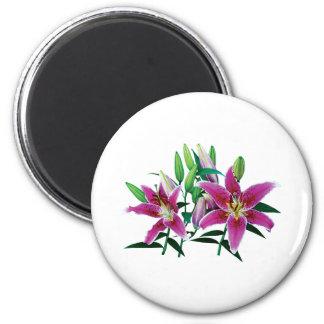 Stargazer Lily Family 6 Cm Round Magnet