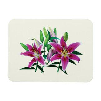 Stargazer Lily Family Rectangular Photo Magnet