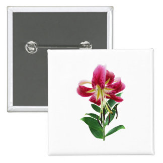 Stargazer Lily Looking Down 15 Cm Square Badge