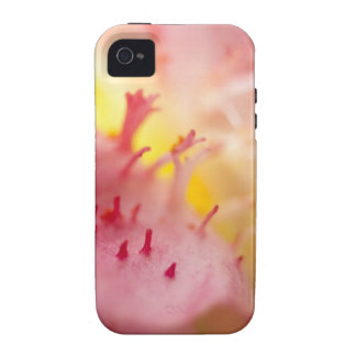 Stargazer Lily Macro Photography iPhone 4/4S Cover