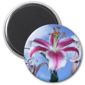 Stargazer Lily 6 Cm Round Magnet