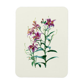 Stargazer Lily Plants Rectangular Photo Magnet