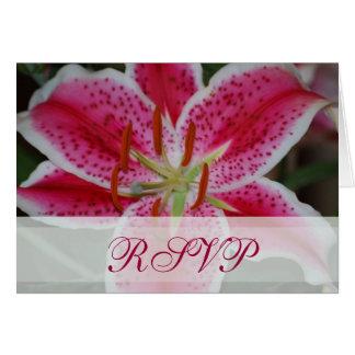Stargazer Lily RSVP Card
