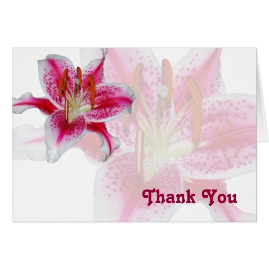 Stargazer Silhouette Thank You Card