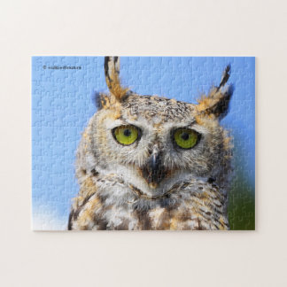 Staring Contest with a Beautiful Great Horned Owl Puzzle