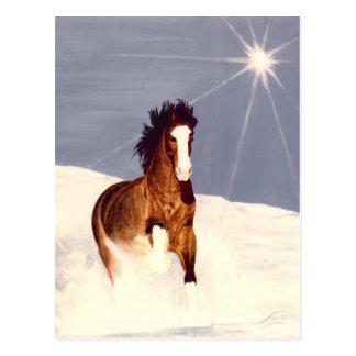 Starlight Run Postcard