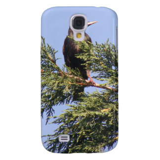 Starling in a Spruce Tree  Galaxy S4 Case