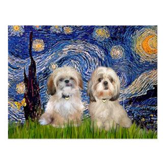Starry Night - 2 Sihih Tzus (P+Y) Postcard