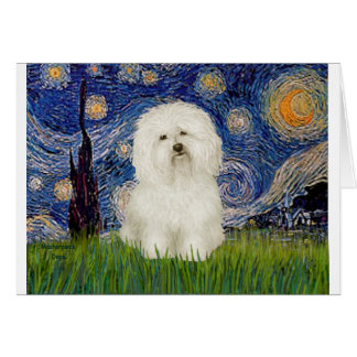 Starry Night - Bolognese 1 Greeting Card
