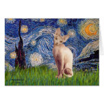 Starry Night - Cream Sphynx Cat Greeting Card