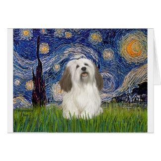 Starry Night - Havanese (#1) Card