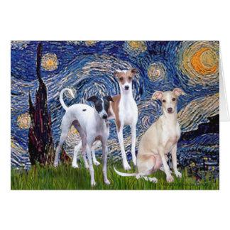 Starry Night - Three Italian Greyhounds Card