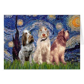Starry Night - Three Italian Spinones Greeting Card