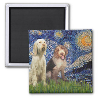 Starry Night - Two Italian Spinones Square Magnet