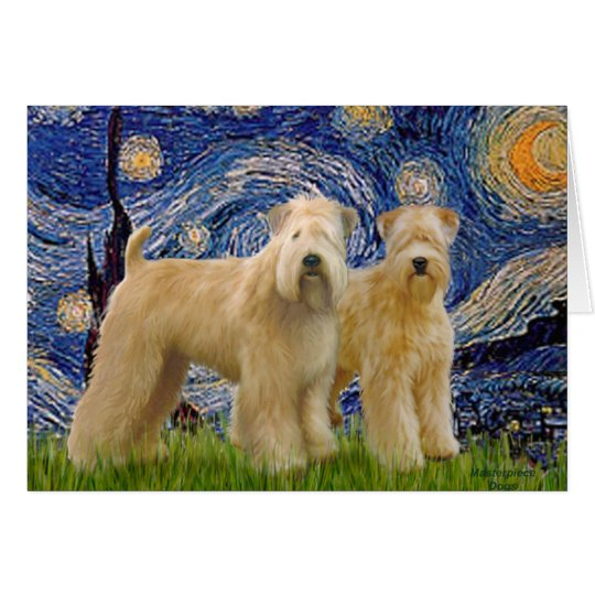 Starry Night - Two Wheaten Terriers (2nd) Card