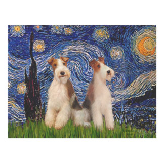 Starry Night - Two Wire Fox Terriers Postcard