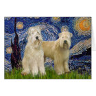 Starry Night - Wheaten Terriers (two) Card