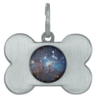 Starry Sky Pet ID Tag