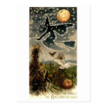 Starry Witch on Broomstick Post Card