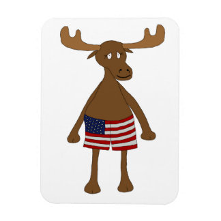 Stars and Stripes, Eh? Rectangular Photo Magnet