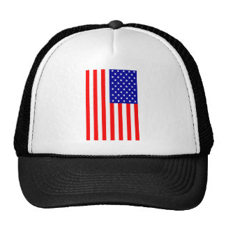 Stars and Stripes Mesh Hat