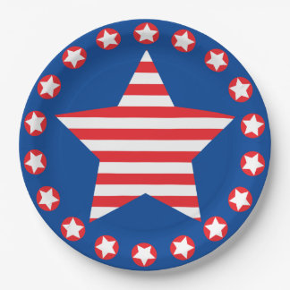 STARS AND STRIPES PAPER PLATE