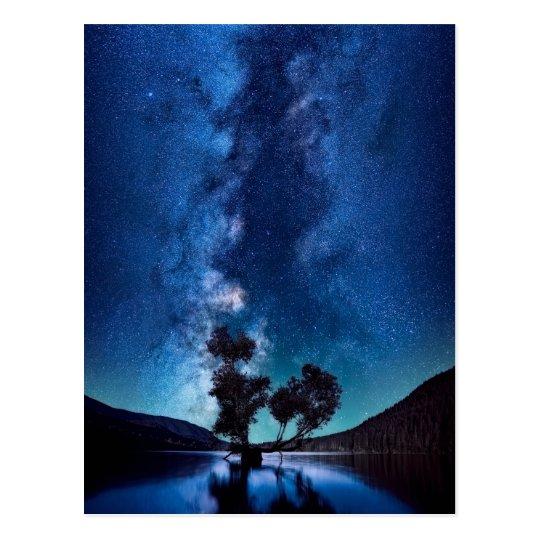 Stars at Night Postcard