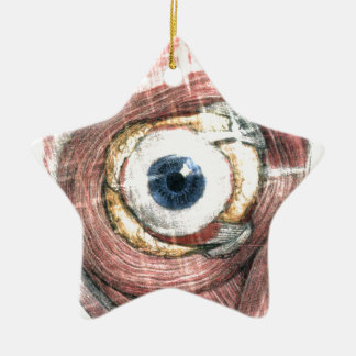 Stars in Your Eyes Christmas Ornament