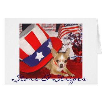 Stars & Stripes Chihuahua Greeting Card