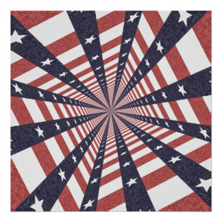 STARS & STRIPES WILD PERSPECTIVE PRINT