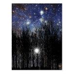 Starscape & Trees - Postcard