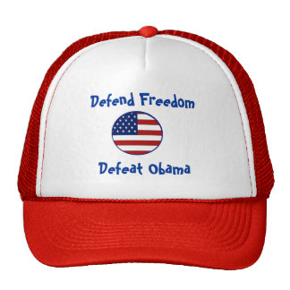 starsnstripesshield, Defend Freedom, Defeat Obama Cap