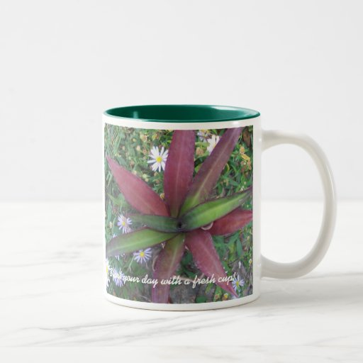 Start your day with a fresh cup coffee mugs