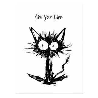 Startle Black Cat Postcard
