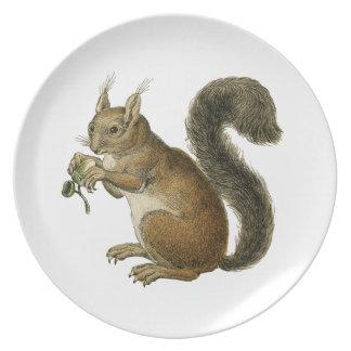 Startled Squirrel Vintage Kitsch Plate