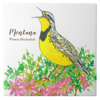 State Bird of Montana Meadowlark Songbird Tile