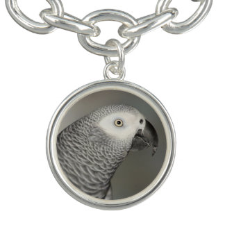 Stately African Grey Parrot