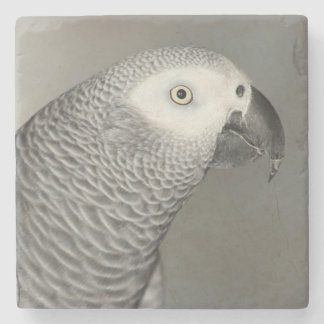 Stately African Grey Parrot Stone Coaster