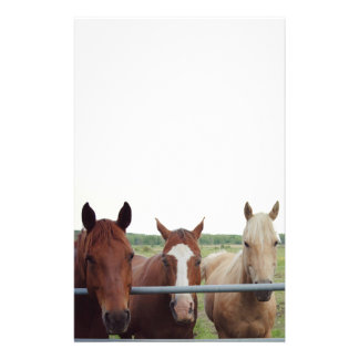 Stationary for the Horse Lover Stationery