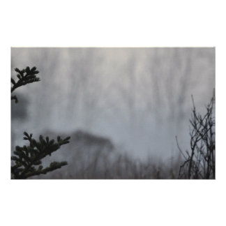 Stationary< Part of the Misty Forest collection Stationery