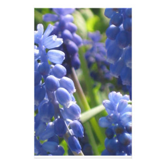 Stationery - Grape Hyacinth