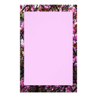 Stationery with Cherry Blossoms Photo