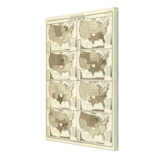 Statistical United States lithographed maps Canvas Print